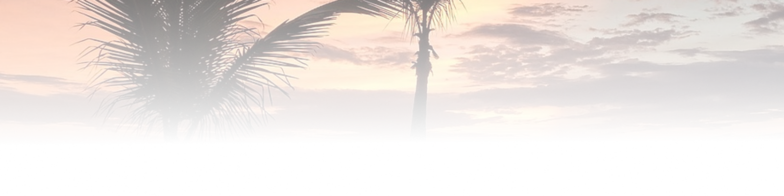 cropped-sunset-grad-2.png