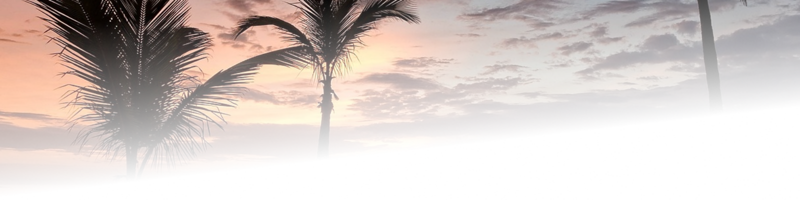 cropped-sunset-gradc.png