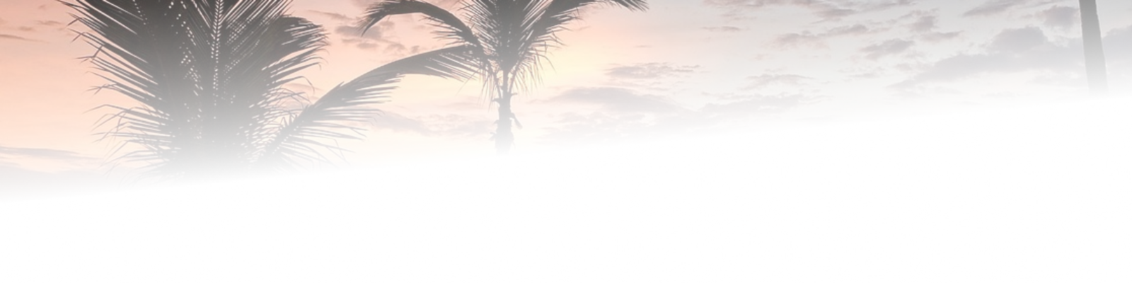 cropped-sunset-gradd.png